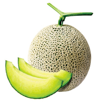 Gokseong Melon-01