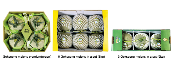 Gokseong Melon gift set